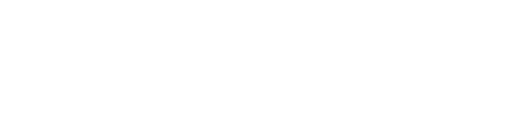 bph Brigitte Platzer-Huber_Coaching Training Consulting_Logo